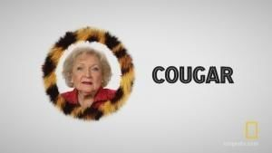 Betty White: The Cougar Expert photo
