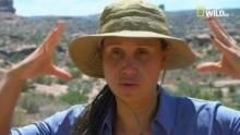 Sfide selvagge - Deserto, tra vita e morte programma