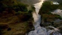 Wild Nilo - Animali: viaggio lungo il Nilo programma
