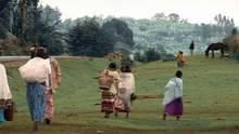 Into Kenya show