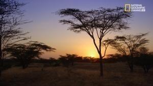 Turkana: il microcosmo quasi privo di fauna foto