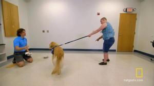 Super Service Dog - Mack photo
