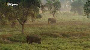Thailandia: l'altra metà del paradiso foto