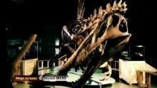 I dinosauri sono tra noi programma