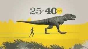 Il re dei dinosauri - Videoinfografica foto