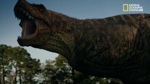 Il mondo di Mega Jurassic foto
