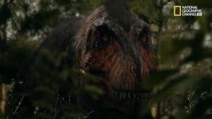 T. Rex: spietato predatore foto