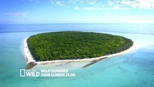 Wild Summer ogni lunedì alle 21.00 foto