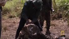 A New Way Of Poaching show