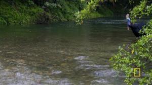 Dangerous Waters photo