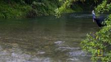 Dangerous Waters show