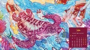 مايو - محيط أزرق أم البلاستيك؟ صورة