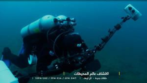 اكتشاف عالم المحيطات: الغوص في الأعماق صورة