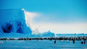 أسياد الجليد صورة