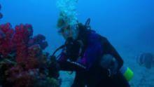 الكوكب الدائم: أبطال المحيطات برنامج