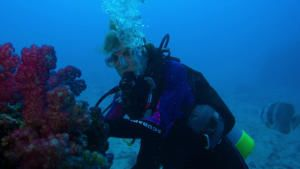 Heroes of the Ocean With Sylvia Earle photo