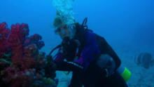 Heroes of the Ocean With Sylvia Earle show
