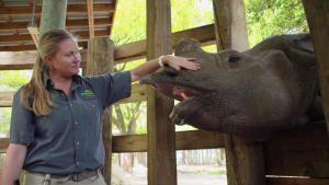أسرار حديقة الحيوان - تامبا صورة
