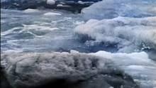 Artic Ice show