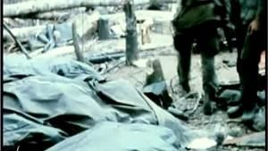 Inside The Vietnam War Part 2 照片
