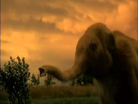 Wooly Mammoth Recreated